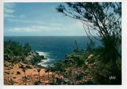 REF 119 : CPSM Ile De La Réunion Bords De Mer Dans Le Sud - Autres