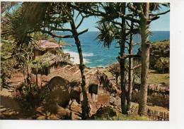 REF 119 : CPSM Ile De La Réunion Cote De Mer Dans Le Sud - Autres