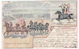 CIRCUS - Zirkus Barnum And Bailey Limited, Litho, Year 1901, Riders On Horseback - Circus