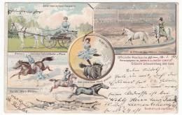 CIRCUS - Zirkus Barnum And Bailey Limited, Litho, Year 1901, Horseback Riding - Circus