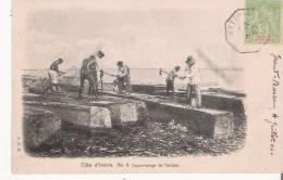 COTE D'IVOIRE 3 EQUARISSAGE DE L'ACAJOU  1904 - Côte-d'Ivoire
