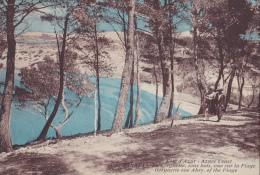 227 SANARY LA GORGUETTE SOUS BOIS VUE SUR LA PLAGE - Sanary-sur-Mer