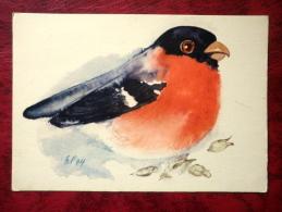 Eurasian Bullfinch - Pyrrhula Pyrrhula - Birds - 1975 - Estonia - USSR - Unused - Oiseaux