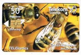 SLOVENIA (SLOVENIJA)  - TELEKOM SLOVENIJE  -  2001 BEES / BOJ  - USED  -  RIF. 3107 - Slovenia