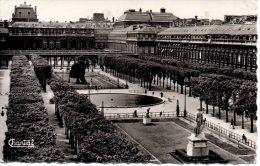 CP -  PHOTO -  PARIS - LE PALAIS ROYAL ET LES JARDINS - 58 - CHANTAL - Unclassified