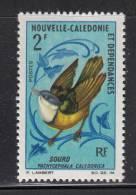 New Caledonia MNH Scott #362 2fr New Caledonia Whistler (bird) Variety Tip Of Tail Is White - Neufs