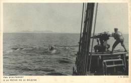 Réf : BO-13-079 : Paa Hvalfangst Pêche à La Baleine - Greenland