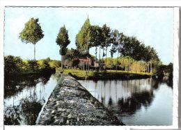 FOLLES (87) - CPSM - Le Moulin De BOIROT (ou BOIZOT), Retenue D´eau, Barrage, Digue - Other Municipalities