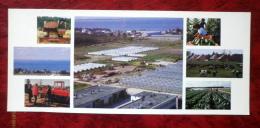 Kirov Collective Farm - Farms - Harvester - Greenhouses - 1986 - Estonia - USSR - Unused - Estonia
