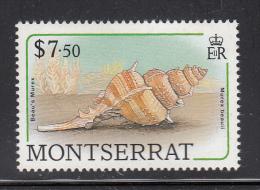 Montserrat MNH Scott #695 $7.50 Beau's Murex (Seashell) - Montserrat