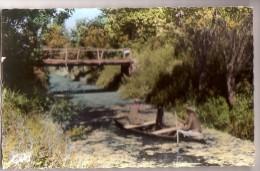 SAINT-HILAIRE-la-PALUD: La Chasse Au Faisan - Sonstige Gemeinden