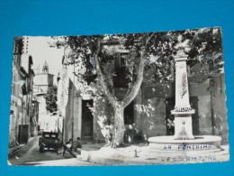 13) Salon De Provence - N° 56 - Carte Photol - Le Monument Aux Morts  ( La Fontaine Des Amours) Année 1962 -  EDIT - MAR - Salon De Provence