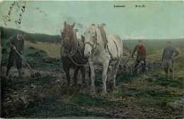 Themes Div-ref F739-agriculture -travaux Des Champs -attelage Chevaux - Labour  -carte Bon Etat  - - Cultures