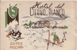 R5 900 - GERONA - LAMOLINA - SUPER MOLINA - HOTEL DEL CIERVO BIANCO - VG. A. ´50 - Gerona