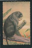 SINGES - EXPOSITION COLONIALE INTERNATIONALE DE PARIS 1931 - Singe à La Banane (signée En Bas à Droite) - Singes