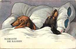 Themes Div- Chiens - Ref F580- Illustrateur -quidenus -mariage De Raison - - Cani