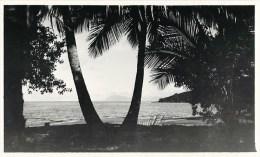 VUE DE L'ILE OUEN SUR LE MONT DORE 1930 NOUVELLE-CALEDONIE PHOTOGRAPHIE PAR GEORGES NEWLAND OCEANIE - Photographs