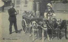 Themes Div- Chiens-ref F438- Belgique - Laitiere Flamande - Attelage De Chiens -editeur Nels  -carte Bon Etat - - Chiens