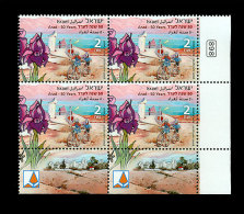 Israel 2013 Block - Arad- 50 Years- (Tab Block) - Unclassified