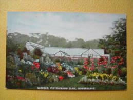 DUNFERMLINE. Les Jardins De Pittencrieff Glen. - Fife