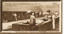 Forçats Dans Le Penitencier Du Maroni No 293 Cliché Harlingue Ce N Est Pas Une CPA - Suchard