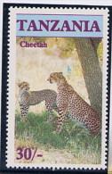 TANZANIA  -  CHEETAH        Acinonyx Jubatus      Il Ghepardo - Roofkatten