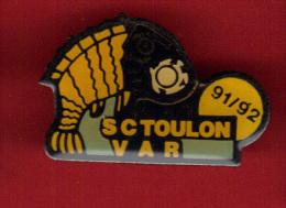 28610-pin's  Football.sctv Sporting-toulon .rascasse.poisson - Football