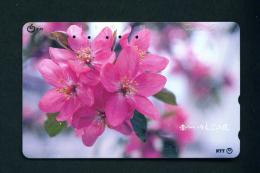 JAPAN - Magnetic Phonecard - Flower(s) As Scan (411-090) - Fleurs