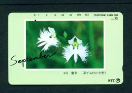 JAPAN - Magnetic Phonecard - Flower(s) As Scan (271-041) - Fleurs
