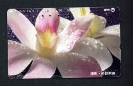 JAPAN - Magnetic Phonecard - Flower(s) As Scan (331-202) - Blumen