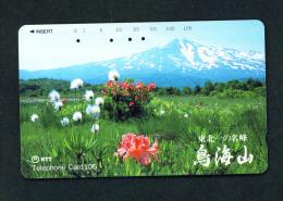 JAPAN - Magnetic Phonecard - Flower(s) As Scan (410-372) - Blumen