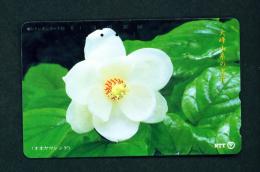 JAPAN - Magnetic Phonecard - Flower(s) As Scan (331-428) - Blumen