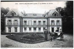 45 - CHATILLON COLIGNY - LE CHATEAU DE RIVIERE - ATTELAGE - Chatillon Coligny