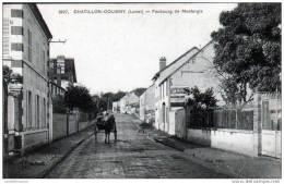 45 - CHATILLON COLIGNY - FAUBOURG DE MONTARGIS - Chatillon Coligny