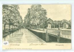 DEN HAAG * DIERGAARDE * ANSICHTKAART * CPA (1998) Gelopen In 1904 Van 's-GRAVENHAGE Naar ALMKERK * NVPH Nr. 51 - Den Haag ('s-Gravenhage)