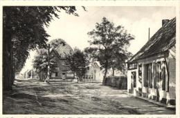 BELGIQUE - FLANDRE ORIENTALE - BERLARE - Kruyenberg. - Berlare