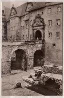 Torgau , Im Bärenfreigehege Von Schloß Hartenfels - Torgau