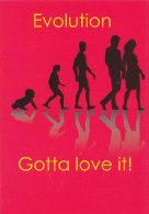 Postcard Humour Evolution - Humor