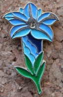GENTIANE BLEUE - FLEUR - BLUME  -    (GRENAT) - Pin's