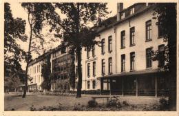 BELGIQUE - BRANBANT FLAMAND - HALLE - BUYSINGEN - Sanatorium De La Reine Vue Des Cures. - Halle