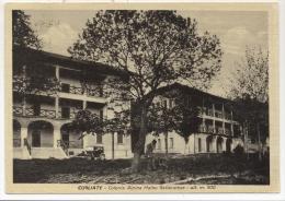 4180-CUGLIATE FABIASCO(VARESE)-COLONIA ALPINA GALLARATESE-FG - Varese