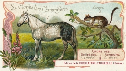 CHROMO CHOCOLAT D´AIGUEBELLE 26 MAMMIFERES CHEVAL LEROT - Aiguebelle
