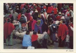 Mercado Indigena Chimborazo Ecuador - Equateur