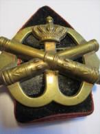 Insigne Artillerie /Brigade Prinses Irene / Hollande/1953-1963     IB52 - Insegne