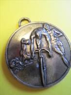 Médaille /Triathlon/ Vélo-Nage-Course/ EVREUX/ Eure / Vers 1970       SPO33 - Athletics
