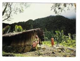 ARCHIPEL  DES  COMORES  /  ANJOUAN  /  DEMEURE  PAYSANNE  ( Femmes Comoriennes ) /  Edit.  OPTICAM  N° 86 - Comores