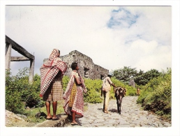 ARCHIPEL  DES  COMORES  /  DOMONI  ( ANJOUAN ) /  SCÈNE  FAMILIÈRE  ( Femmes Et âne ) /  Edit.  OPTICAM  N° 82 - Comores