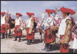 China - Tibetan Young Men On Horse-race - Tibet