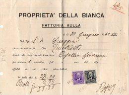 PROPRIETA´ DELLA BIANCA-FATTORIA AULLA-CENT.25+50 - Fatture & Documenti Commerciali