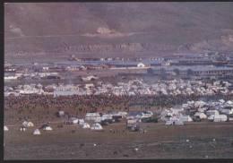 China - A Gathering On The Grassland, Tibet - Tibet